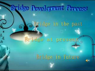 Bridge Development Process