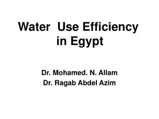 Water  Use Efficiency  in Egypt