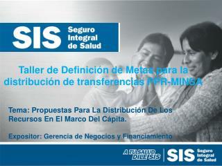 Taller de Definición de Metas para la distribución de transferencias PPR-MINSA