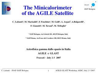 The Minicalorimeter  of the AGILE Satellite