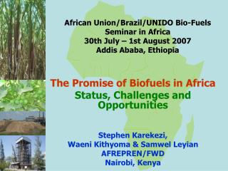 The Promise of Biofuels in Africa  Status, Challenges and Opportunities Stephen Karekezi,