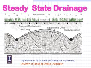 Steady  State Drainage
