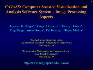 CAVASS : Computer Assisted Visualization and Analysis Software System – Image Processing Aspects