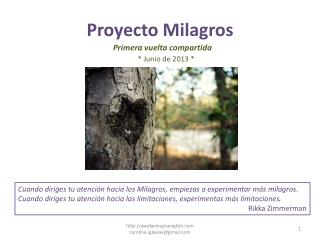 Proyecto Milagros