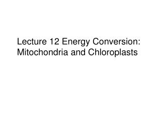 Lecture 12 Energy Conversion: Mitochondria and Chloroplasts
