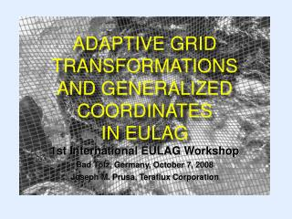 ADAPTIVE GRID TRANSFORMATIONS  AND GENERALIZED COORDINATES  IN EULAG