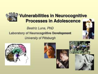 Beatriz Luna, PhD Laboratory of Neurocognitive Development University of Pittsburgh