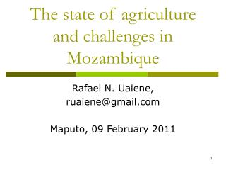 The state of agriculture and challenges in Mozambique