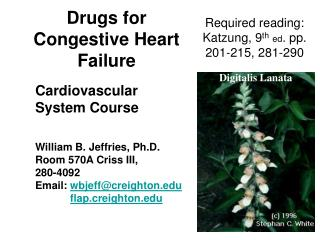 Drugs for Congestive Heart Failure