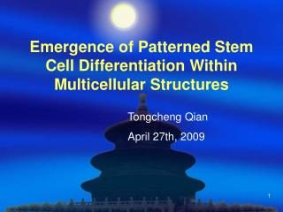 Emergence of Patterned Stem Cell Differentiation Within Multicellular Structures