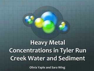 Heavy Metal Concentrations in Tyler Run Creek Water and Sediment