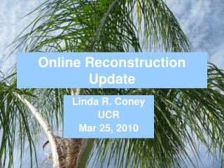Online Reconstruction Update