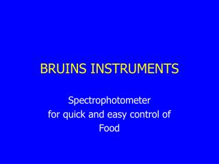 BRUINS INSTRUMENTS