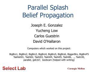 Parallel Splash Belief Propagation