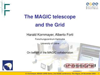 The MAGIC telescope  and the Grid