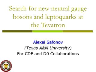 Search for new neutral gauge bosons and leptoquarks at the Tevatron