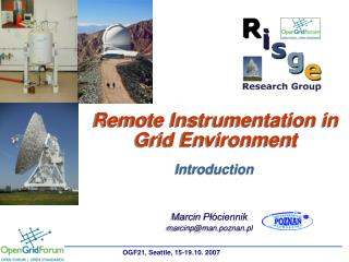 Remote Instrumentation in Grid Environment