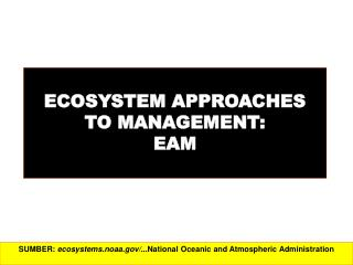 ECOSYSTEM APPROACHES  TO MANAGEMENT:  EAM