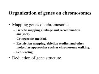 Organization of genes on chromosomes