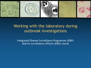 Working with the laboratory during outbreak investigations