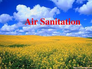 Air Sanitation