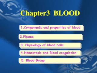Chapter3  BLOOD