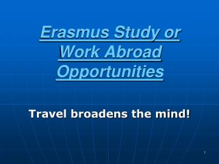 Erasmus Study or Work Abroad Opportunities