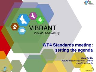 WP4 Standards meeting: setting the agenda