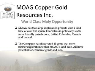 MOAG Copper Gold Resources  Inc.