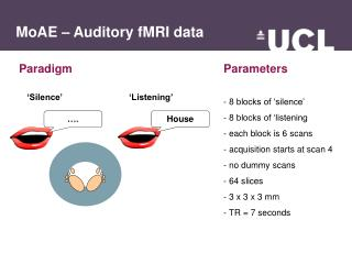MoAE – Auditory fMRI data
