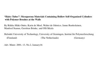 """""""Hairy Tubes"""": Mesoporous Materials Containing Hollow Self-Organized Cylinders"""