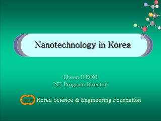 Nanotechnology in Korea