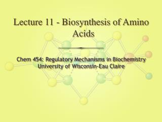 Lecture 11 - Biosynthesis of Amino Acids