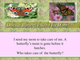 Does a Butterfly Need Its Mom?