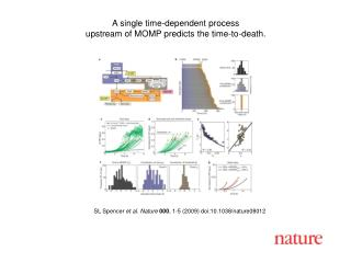 SL Spencer  et al. Nature 000 , 1-5 (2009) doi:10.1038/nature08012