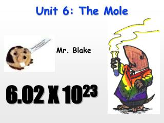 Unit 6: The Mole