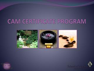 CAM CERTIFICATE PROGRAM
