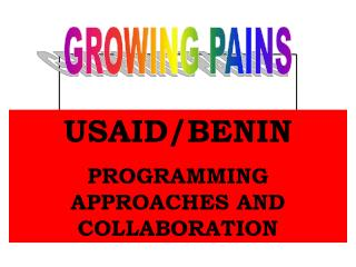 USAID/BENIN PROGRAMMING APPROACHES AND COLLABORATION