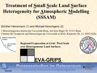 Treatment of  S mall  S cale Land  S urface Heterogeneity for  A tmospheric  M odelling (SSSAM)
