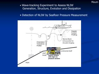 Wave-tracking Experiment to Assess NLIW    Generation, Structure, Evolution and Dissipation