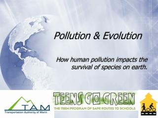 Pollution & Evolution