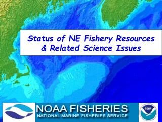 Status of NE Fishery Resources & Related Science Issues