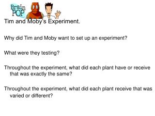 Tim and Moby's Experiment. Why did Tim and Moby want to set up an experiment?