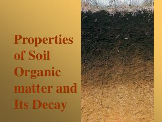 Properties  of Soil  Organic  matter and  Its Decay