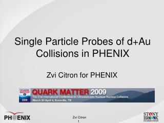 Single Particle Probes of d+Au Collisions in PHENIX