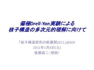 偏極 Drell-Yan 実験による 核子構造の多次元的理解に向けて