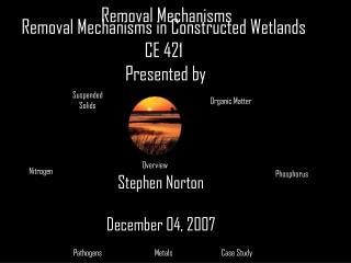 Removal Mechanisms in Constructed Wetlands CE 421  Presented by