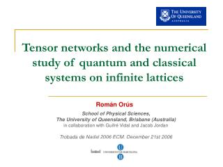Tensor networks and the numerical study of quantum and classical systems on infinite lattices
