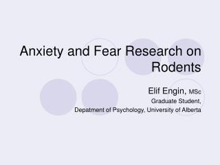Anxiety and Fear Research on Rodents