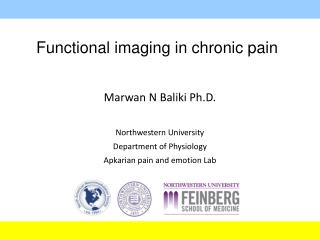 Functional imaging in chronic pain